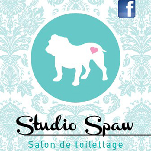 studio-spa-logo