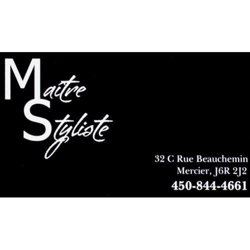 maitre-styliste-logo