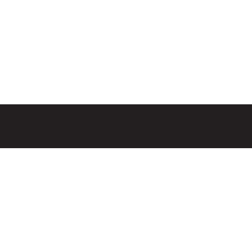 LEMPRISE_logo 2
