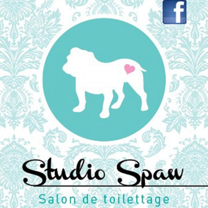 studio-spa-logo